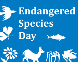 Endangered Species Day?