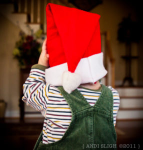 Santa's Lost His Mojo: A Christmas Story