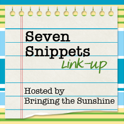 Seven Snippets: Road Trip Edition