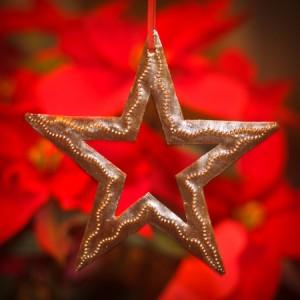My Christmas Star