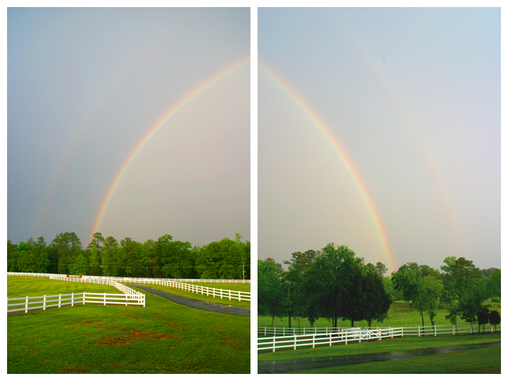 The two ends of the double rainbow, seen by our family the afternoon of my cousin's funeral - May 4, 2006